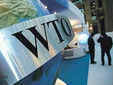 世贸组织警告 全球贸易壁垒存在上升风险