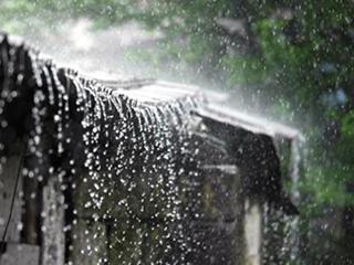 江南地区如何挑选除湿机? 认准无压缩机是关键