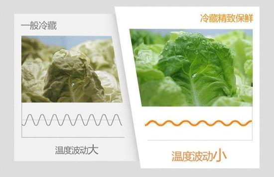冰箱内部的温度波动直接影响食材的保鲜效果