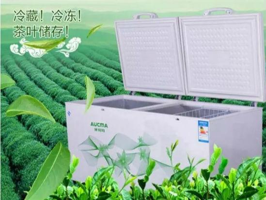 澳柯玛茶叶柜成茶农储存春茶好帮手