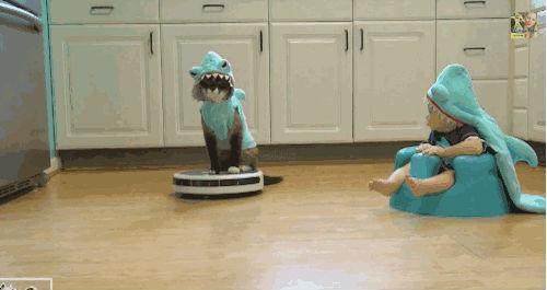 扫地机器人评测:科沃斯为家庭全面清洁