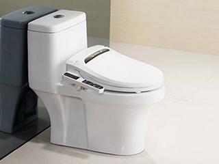 处于大时代的发展下 智能马桶将引领卫浴新市场