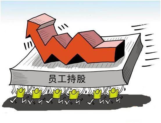 苏宁员工持股计划启动 为何市场反映积极强烈?