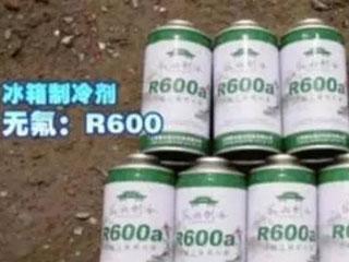 美国家用冰箱制造商要求提高R600a充注限值
