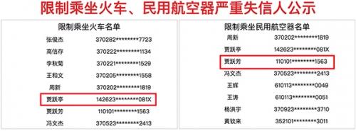 贾跃亭和贾跃芳被列入首批限制乘坐火车飞机名单