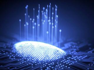 销量下滑的指纹芯片如何应对渐进饱和的手机市场?