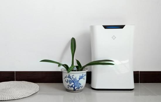 小居室首选空气净化器:新颐小白1.0