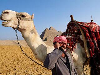 人民日报:中国手机品牌在埃及受青睐