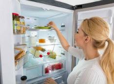 冰箱里放上它 一年不用清洁还特别省电