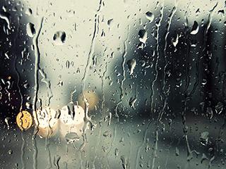 南方梅雨北方桑拿 度夏如何选择除湿机?