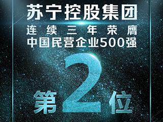 2018中国民营企业500强公布,苏宁蝉联第2
