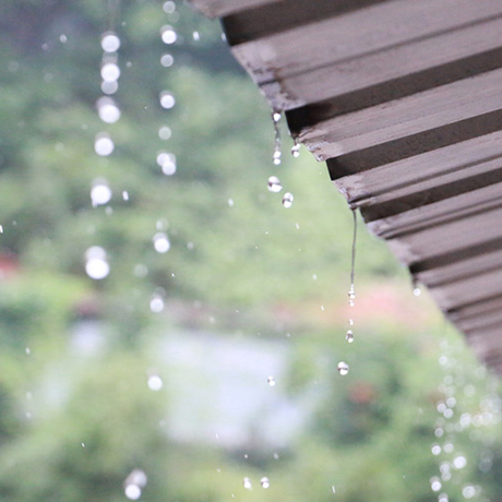 雨季再漫长,期待也不曾让阳光散场!