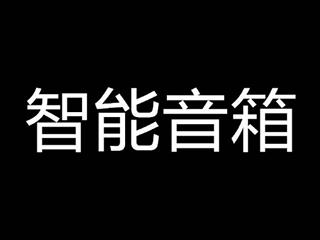 2017年案场管理思路_图文