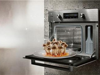 蒸箱崛起:厨电巨头发力 前景广被看好