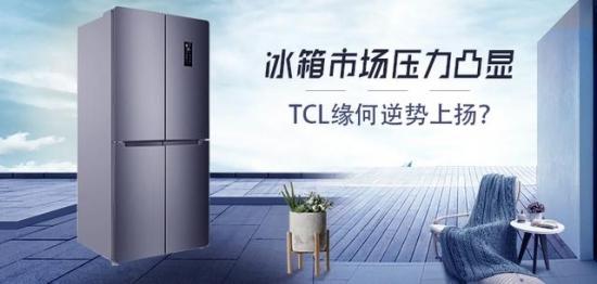 冰箱市场压力凸显 TCL缘何逆势上扬?