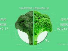 """绿叶VS枯叶 卡萨帝冰箱""""7日封鲜""""挑战保鲜不可能"""