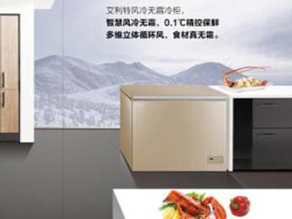 杜绝冷柜异味,澳柯玛0结霜冷柜是首选