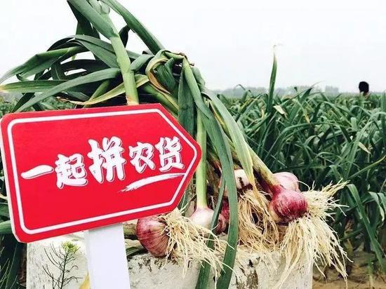 农产品供应链一定程度上改变了拼多多