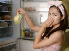 年后冰箱污渍多异味重?教你三招干净杀菌