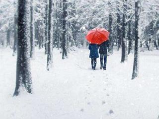 大雪纷飞的浪漫情人节,你爱的她收到了什么礼物?