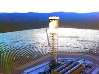 美国30万块太阳能板组成的发电站,如今却成捕鸟器!