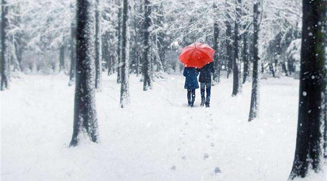 大雪紛飛的浪漫情人節持湊,你愛的她收到了什麼禮物?