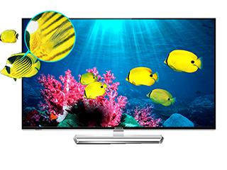 新春大发时时彩网站消费市场旺旺旺 国产电视零售规模达6年最高