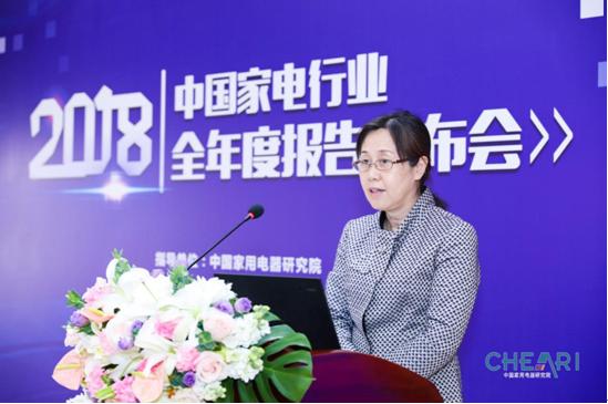 中国轻工业信息中心行业信息处处长刘丹静致辞