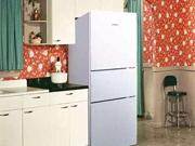 小户型最爱 经典款三门冰箱身材小容量大
