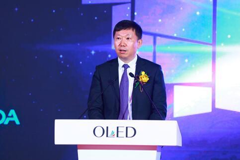 中国电子视像行业协会秘书长 郝亚斌