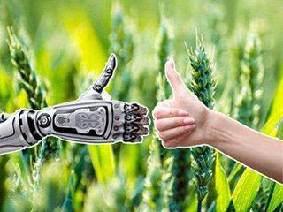 机器人种的菜已上市 你的餐盘里有吗?