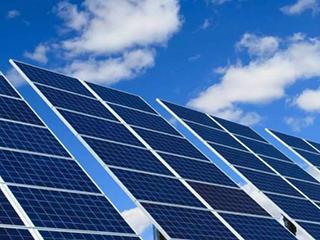 知道荧光微藻吗?将能促使超高效太阳能电池的发展!