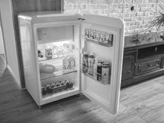 小众功能型产品 开拓冰箱发展新思路