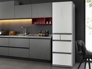 松下冰箱瞄准中国高端市场 推出都市健康冰箱新品