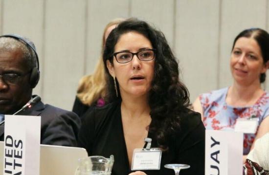 美国气候联盟执行主任Julie Cerqueira