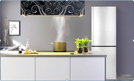 澳柯玛冰箱感知冬夏,让新鲜节能时刻伴随左右