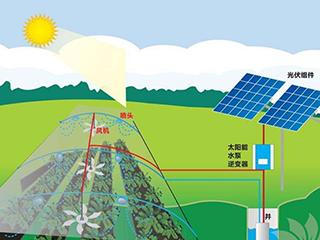 巴布亚新几内亚成全球离网太阳能前沿阵地