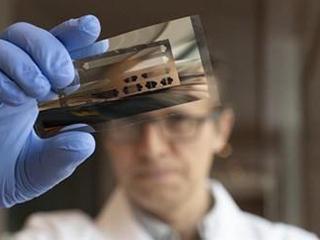 消息称新一代太阳能电池板绿色更环保 期待吗?