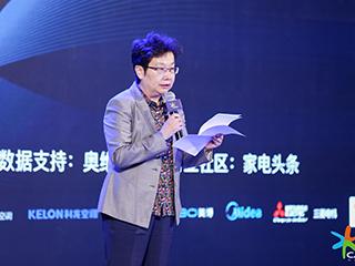 致辞:中国家用电器协会理事长姜风