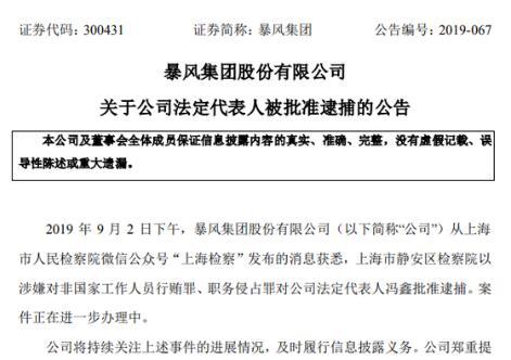 暴风集团公告:法定代表人冯鑫被批准逮捕