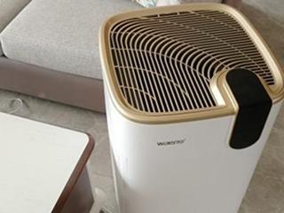一年四季都要健康呼吸,如何选购空气净化器