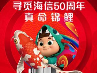 """海信领跑双十一电视排行榜""""锦鲤""""每5年可领一套家电"""