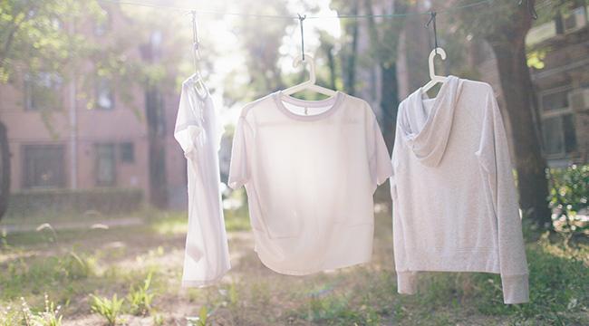 发展迅速的干衣产品,火热背后藏着什么问题?