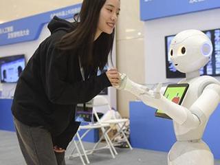 报告:2022年中国人工智能产业规模逼近300亿美元