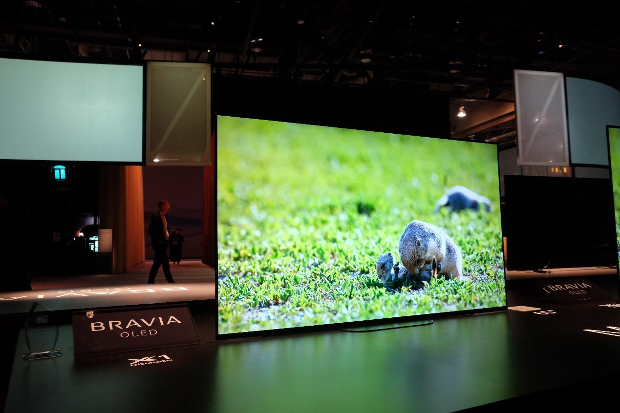 """这回8K可以""""上树""""了 2020年索尼电视全系新品解析"""