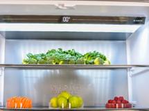 技术创新活跃后疫情时代冰箱市场加速复苏