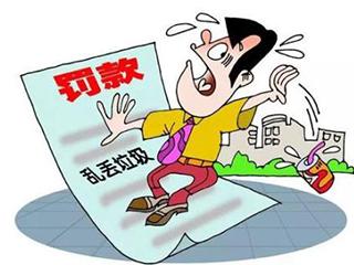 9000元!北京市开出生活垃圾分类执法处罚第一单