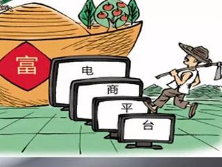 中国农村网民数量突破2.5亿 农村电商让致富路更宽了