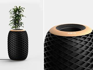 与植物结合的空气净化器