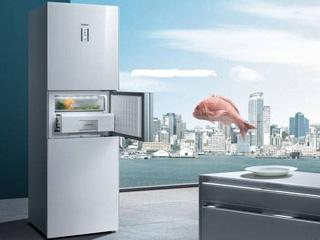 冰箱市場中低價產品占大頭,高端產品進入增長區間